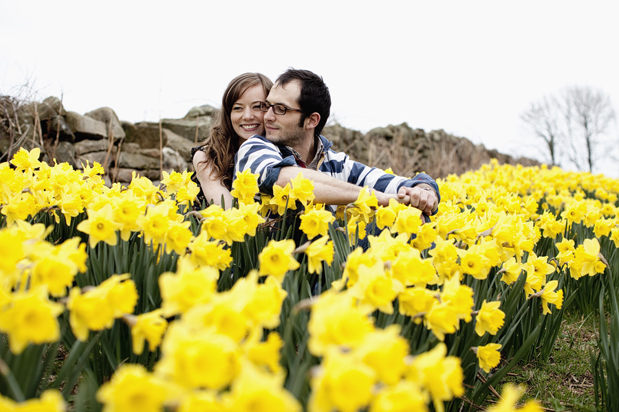 Wedding engagement photograph - couple sit amongst daffodils smiling, facing away from camera